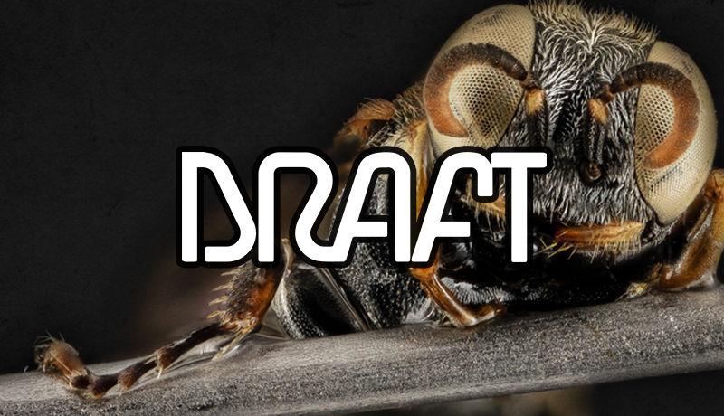 Draft interview