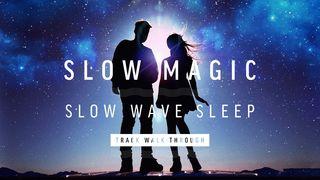 Twt slowmagic slowwave 1920