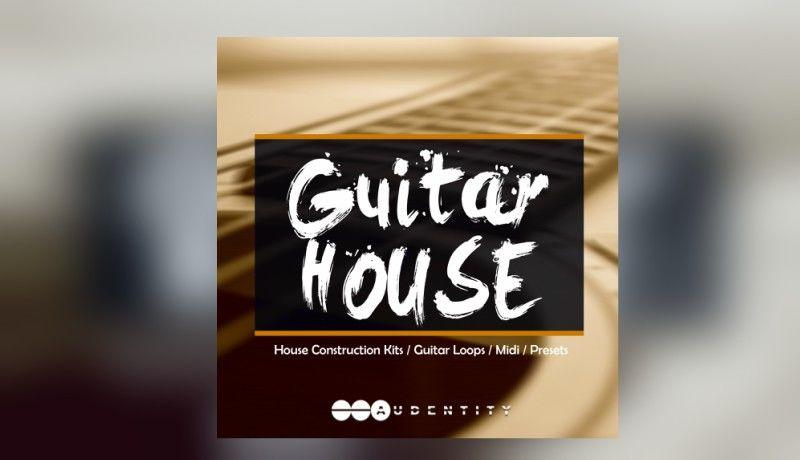 205 guitar house%281%29