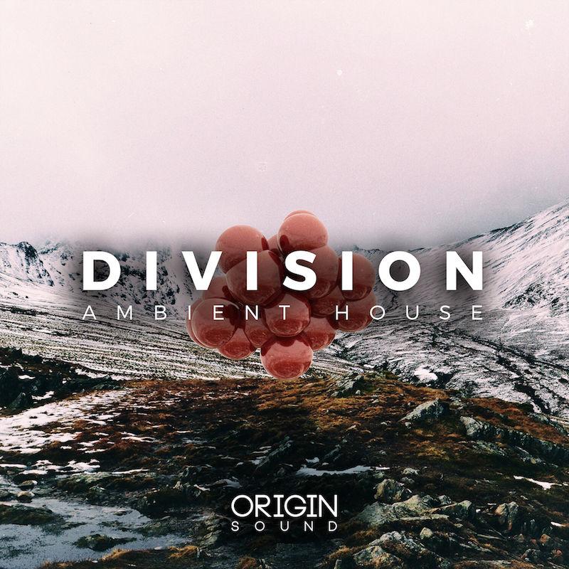 350 division
