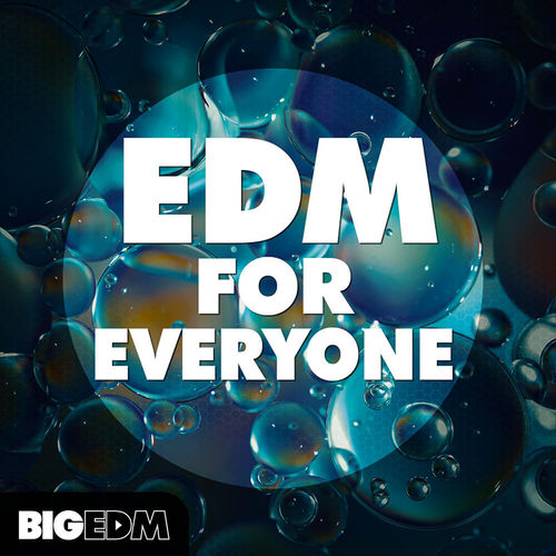 1021 800x800big edm   edm for everyone cover