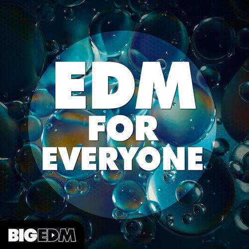 1021 800x800big edm   edm for everyone cover