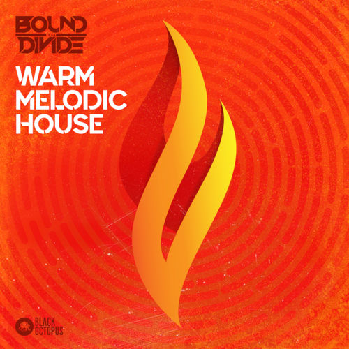 1025 black octopus sound   warm melodic house 800