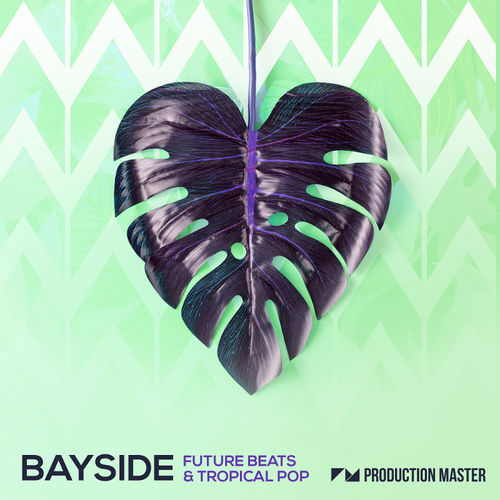 1050 bayside   future beats   tropical pop   800x800