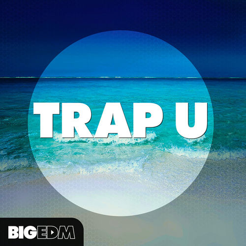 1122 800x800big edm   trap u cover