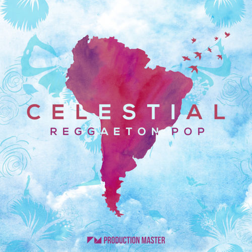 1143 production master   celestial   reggaeton pop   800