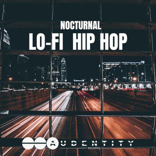 1204 lo fi nocturnal hip hop