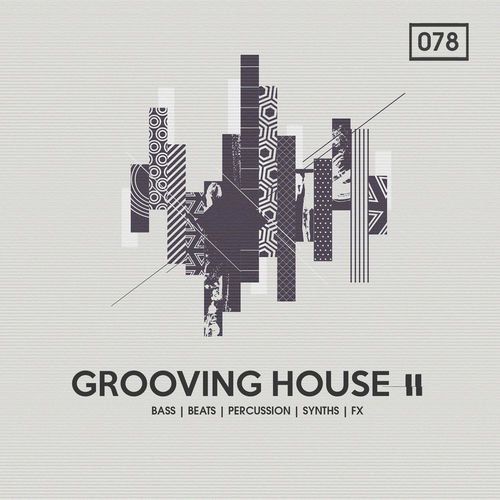 1228 rsz grooving house 2%282%29
