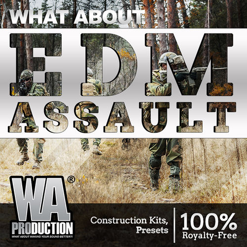 1323 800x800wa production   what about edm assault cover