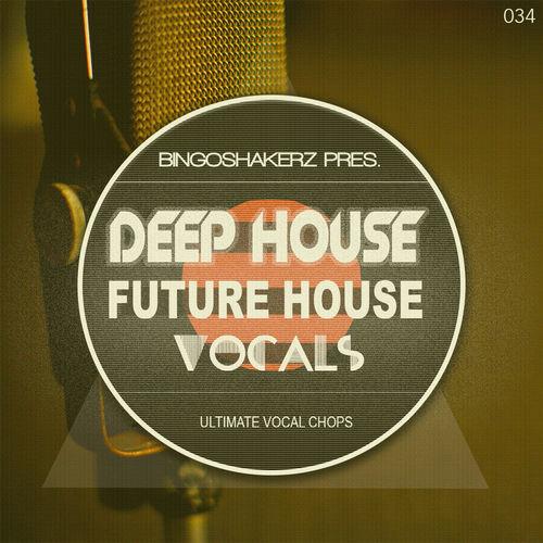 146 rsz deep   future house vocals