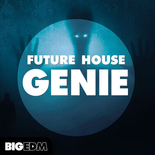 1497 800x800big edm   future house genie artwork
