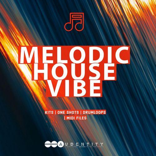 1498 melodic house vibe