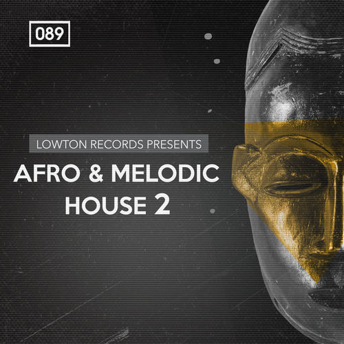 1536 rsz afro   melodic house 2