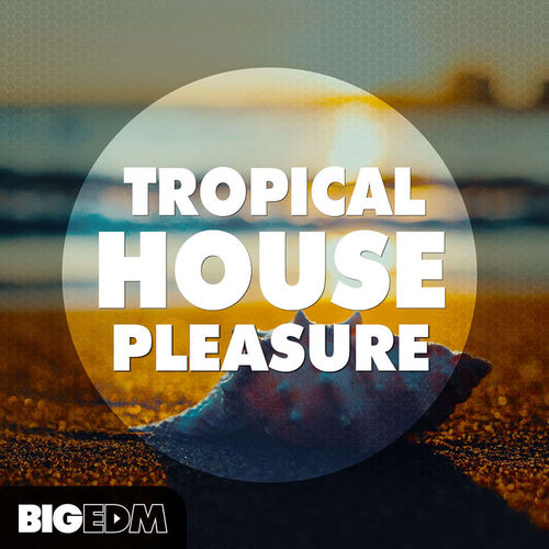 1573 800x800big edm   tropical house pleasure cover