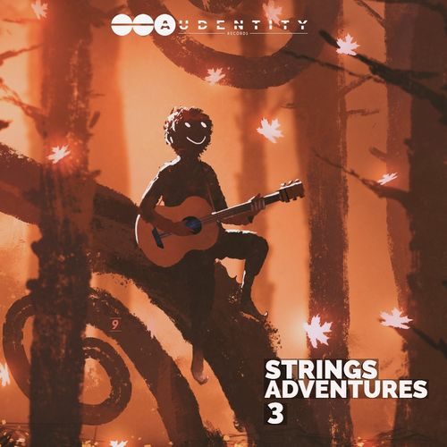 1660 strings adventures 3