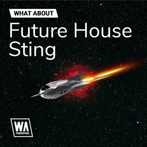 1679 800x800w. a. production   what about future house sting artwork