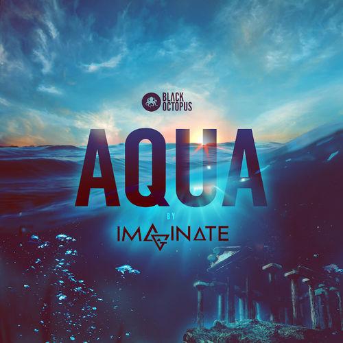 1681 black octopus sound   imaginate   aqua   artwork 800