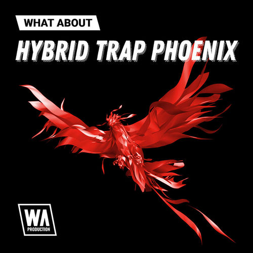 1704 800x800w. a. production   what about hybrid trap phoenix artwork