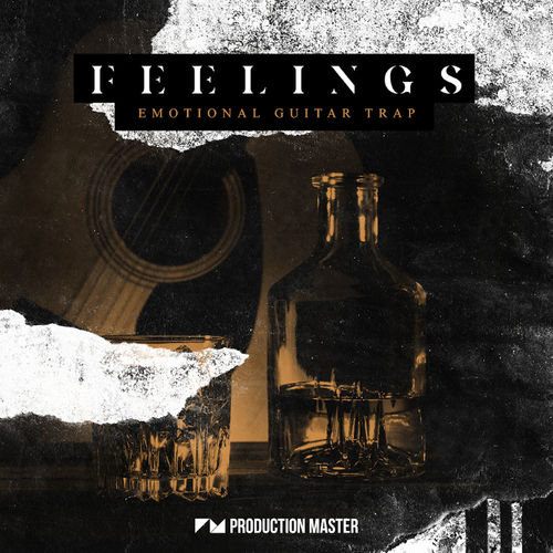 1755 production master   feelings  emotional guitar trap   artwork 800