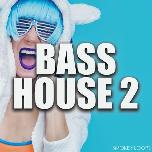 1769 bass house2 800