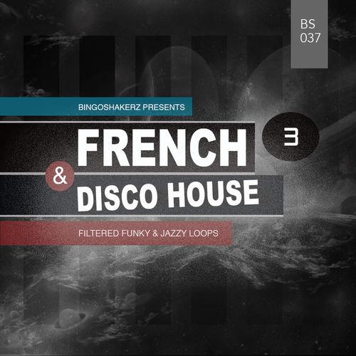 189 rsz french   disco house 3