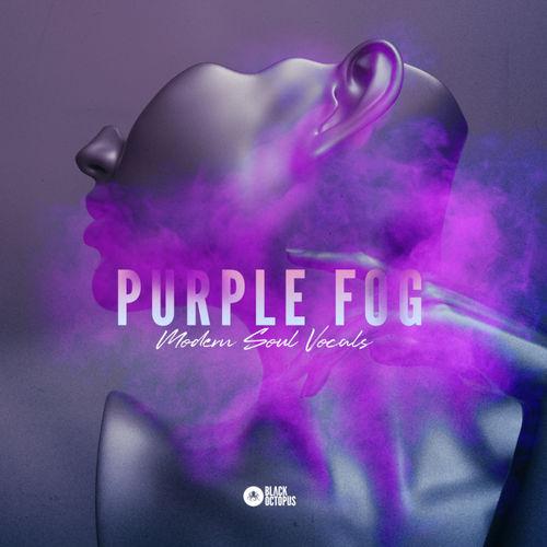 2002 black octopus sound   purple fog   modern soul   800