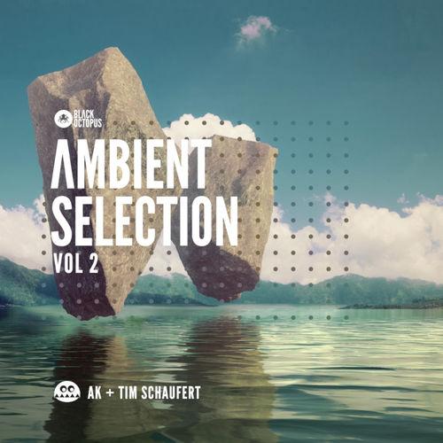 2015 black octopus sound   ambient selections vol 2 by ak   tim schaufert   artwork 800