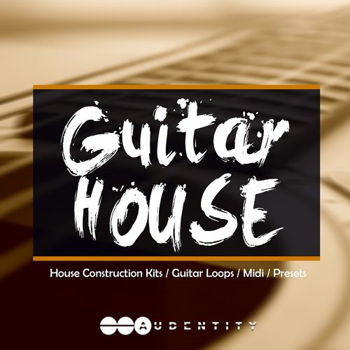 205 guitar house %281%29