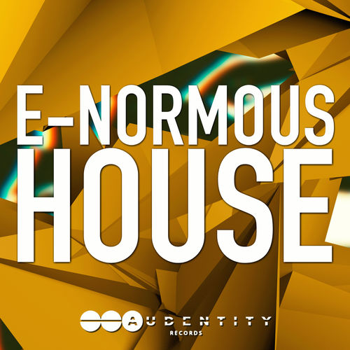281 e normous house cover 5