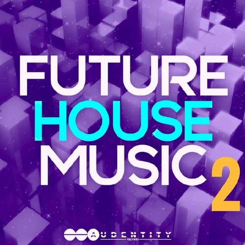 311 future house music 2 artwork
