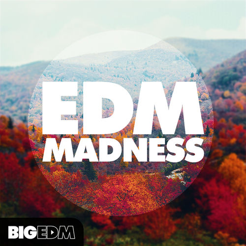 316 800big edm   big edm madness cover