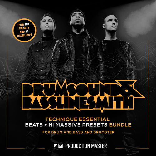 331 ds technique beats and presetsartwork 800 x 800