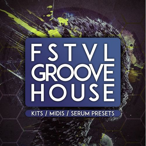 339 fstvl groove house