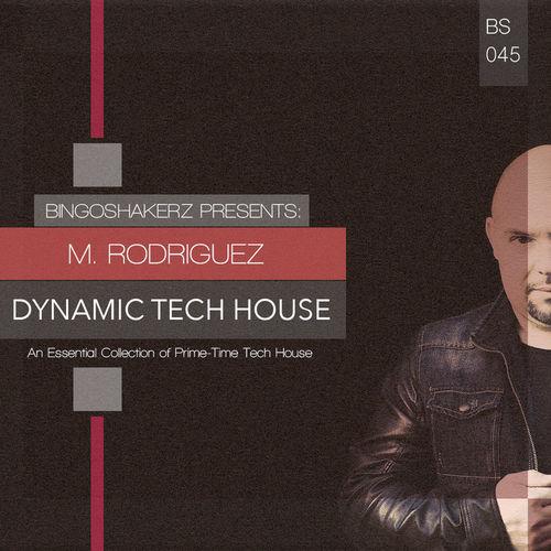 346 rsz mrodriguez dynamic tech house