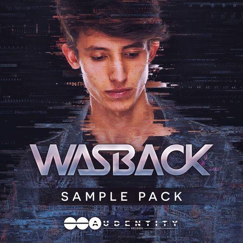 419 wasback samplepack