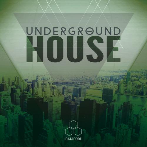 447 datacode focus underground house 800px
