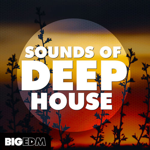 474 800x800big edm   sounds of deep house cover