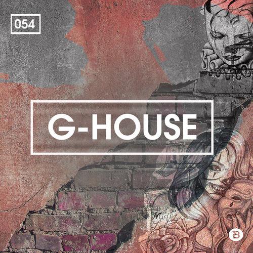 529 rsz g house