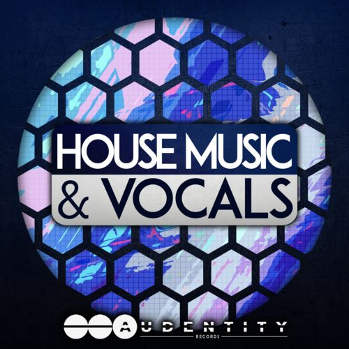 564 house music   vocals