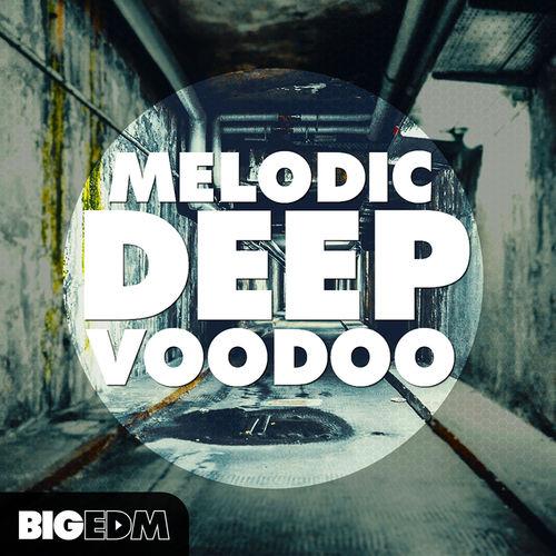 597 800big edm   melodic deep voodoo cover