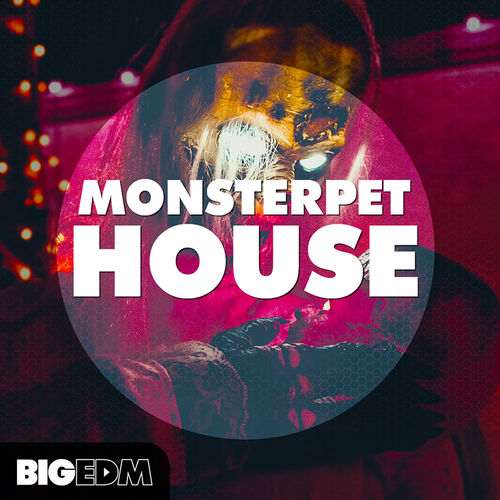 600 800x800big edm   monsterpet house cover
