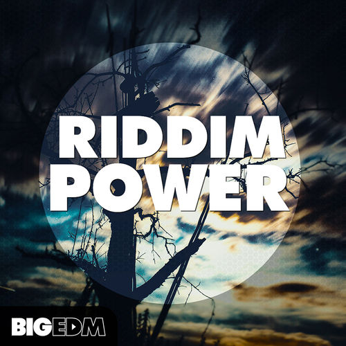 601 800x800big edm   riddim power cover