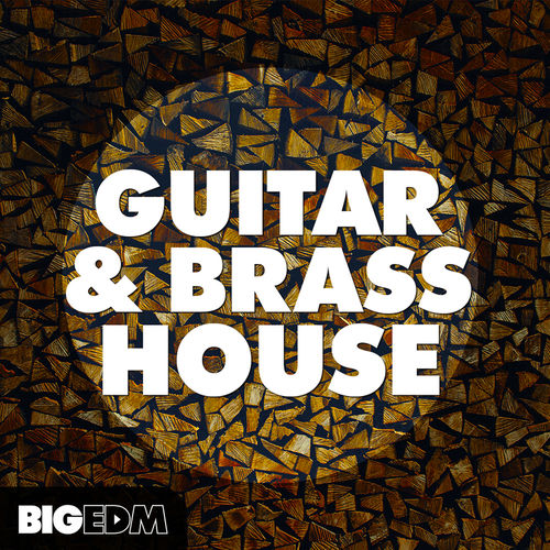 643 800x800big edm   guitar   brass house cover