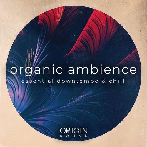 704 organic ambience 800