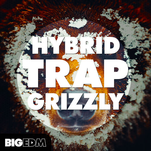 711 800x800big edm   hybrid trap grizzly cover