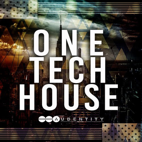 719 one tech house artwork