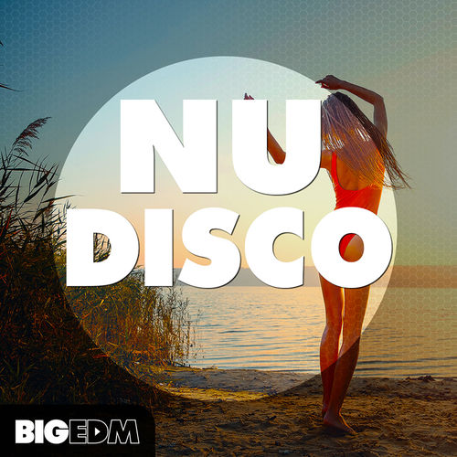 749 800x800big edm   nudisco sample pack cover