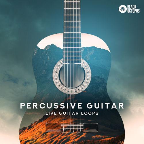 757 percussive guitar 800 x 800