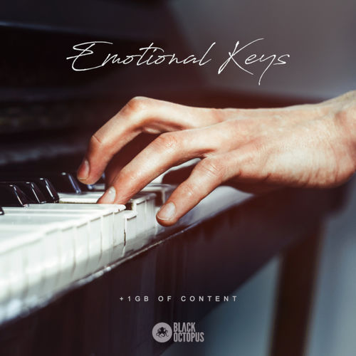 899 emotional keys artwork   800x800