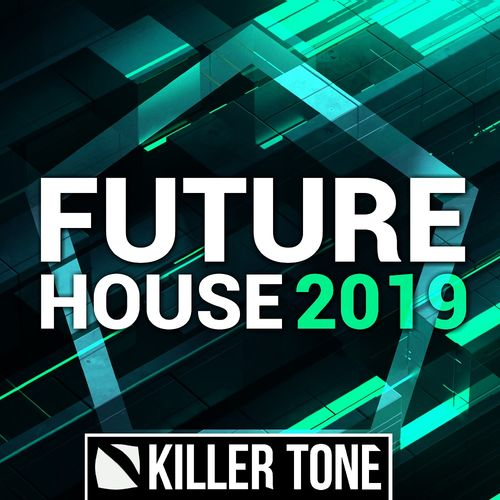 913 future house 2019 artwork